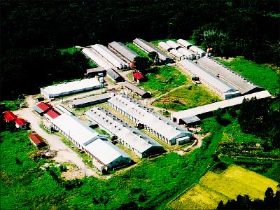 那須高原牧場 株式会社【家畜の飼育・管理業務】の求人情報