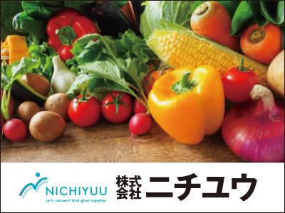 株式会社 ニチユウ【野菜の計量・カップへの仕分け(製造)】の求人情報