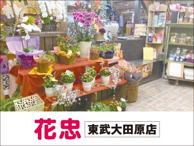 花忠 東武大田原店【パート】の求人情報